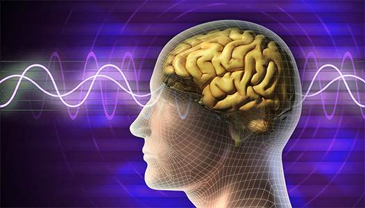 brain-waves-purple_web